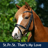 St.Pr.St. That's my Love